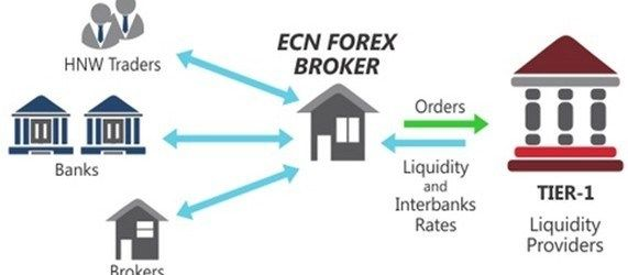 Ecn forex brokers