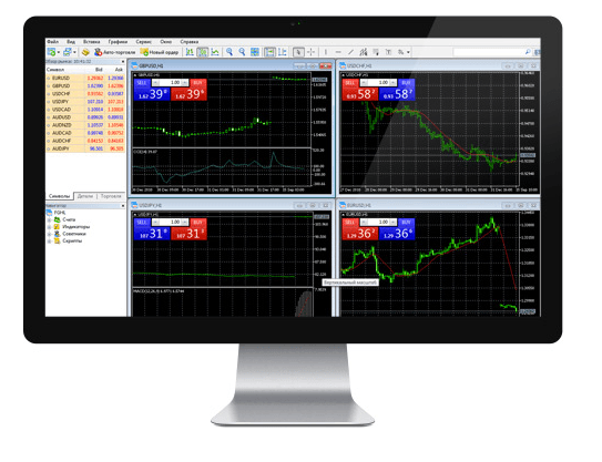 MetaTrader 5 FIBO Group