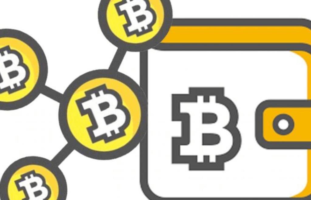 Come conservare Bitcoin Cash?