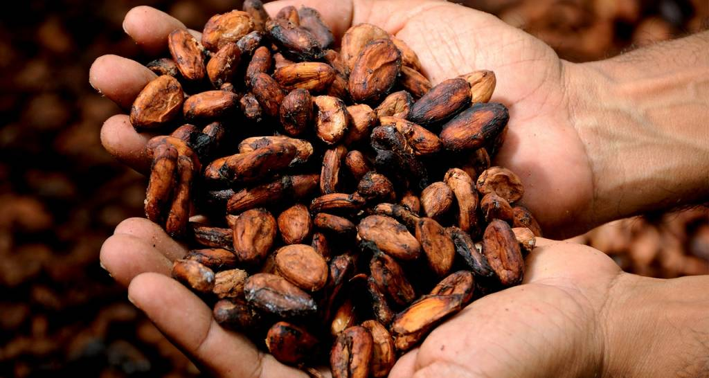 Trading Cacao